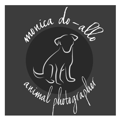 monica-doallo-logo
