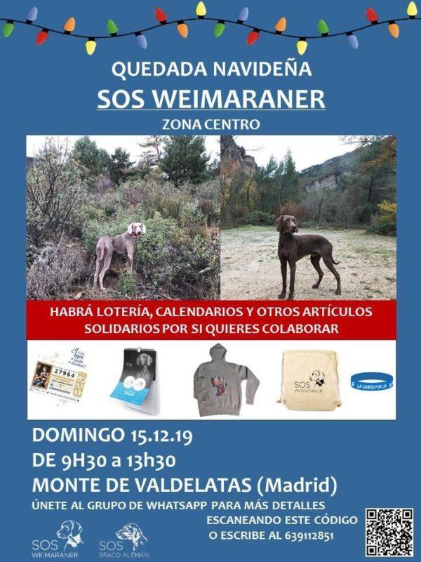 quedadanavideña_madrid19
