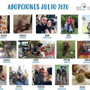 NUESTRAS ADOPCIONES DE JULIO.